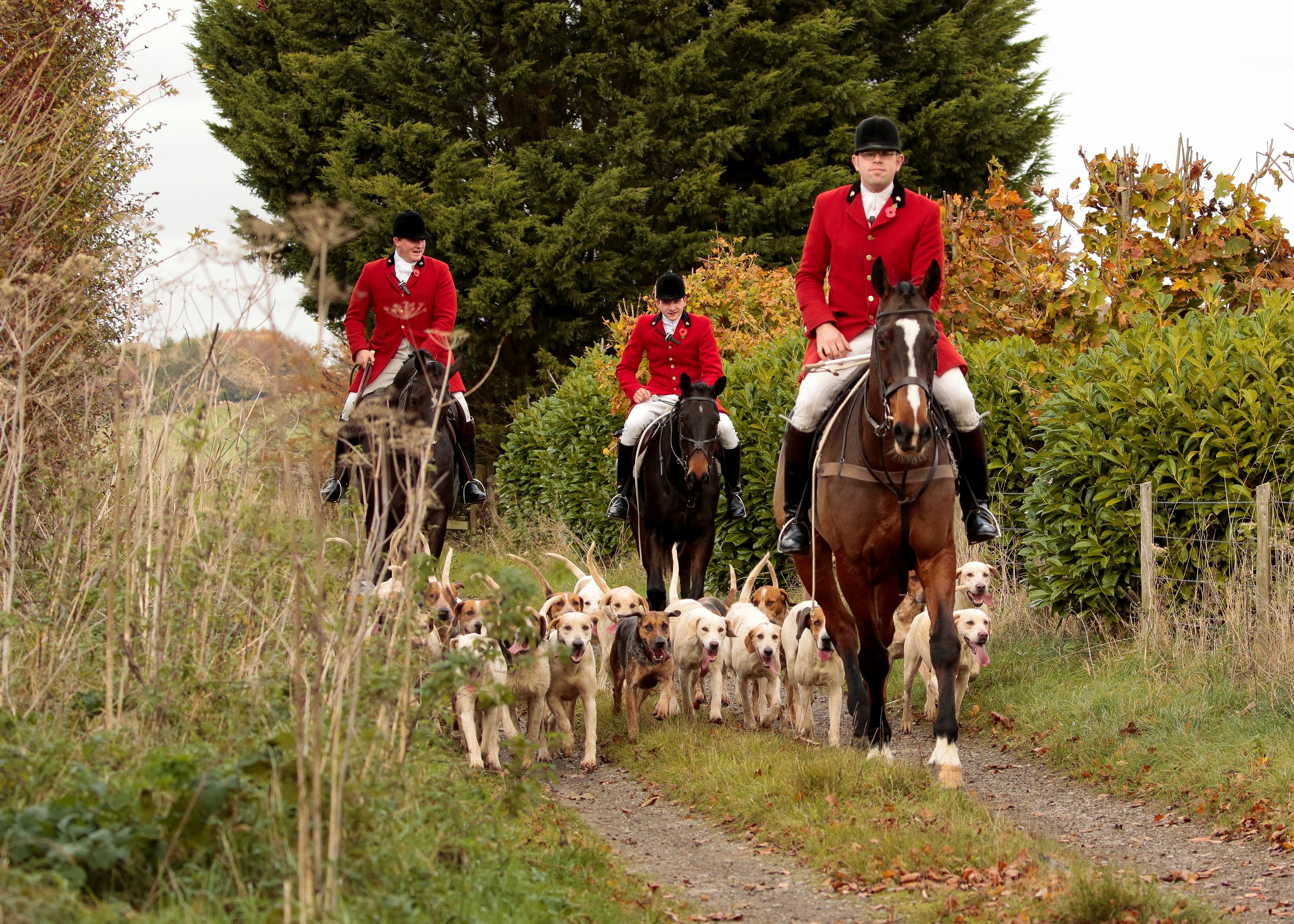 vine and craven hunt boxing day meet